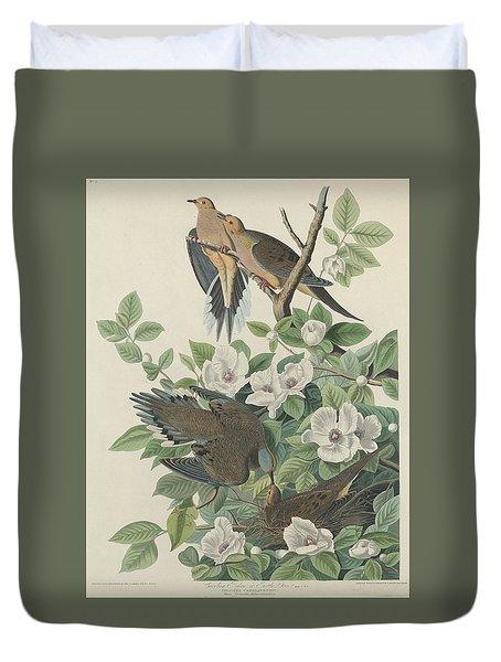 Carolina Pigeon Or Turtle Dove Duvet Cover by John James Audubon