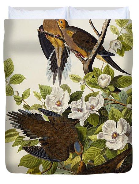 Carolina Turtledove Duvet Cover by John James Audubon