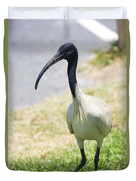 Carpark Ibis Duvet Cover by Jorgo Photography - Wall Art Gallery