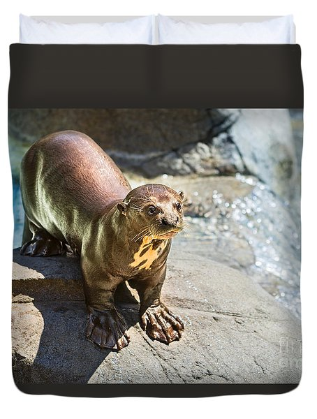 Catching Some Sun Duvet Cover by Jamie Pham