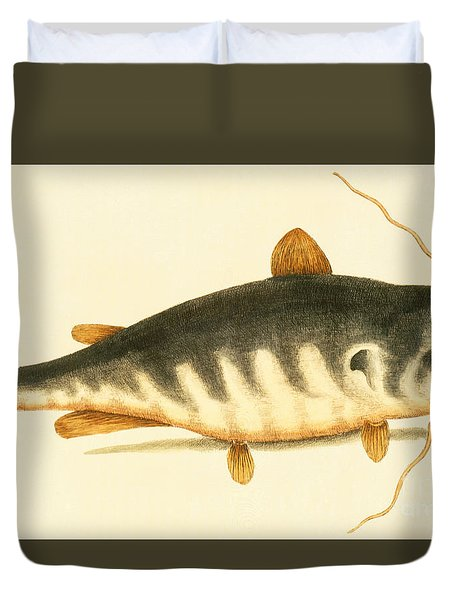 Catfish Duvet Cover by Mark Catesby