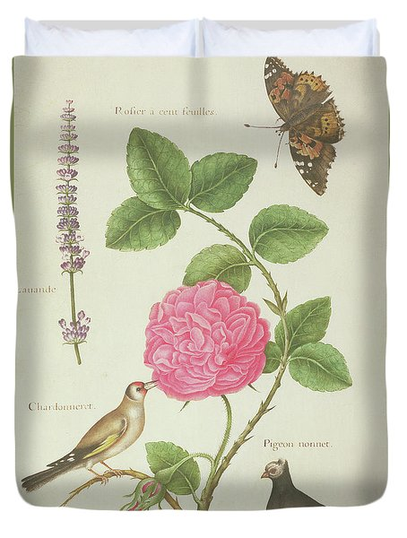 Centifolia Rose, Lavender, Tortoiseshell Butterfly, Goldfinch And Crested Pigeon Duvet Cover by Nicolas Robert