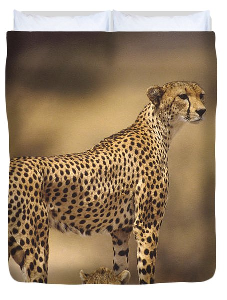 Cheetah Acinonyx Jubatus Mother With Duvet Cover by Gerry Ellis