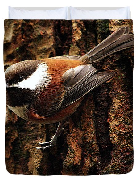Chestnut-backed Chickadee On Tree Trunk Duvet Cover by Sharon Talson