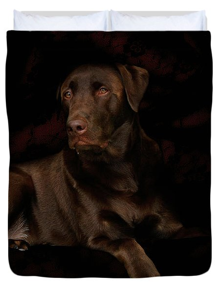 Chocolate Lab Dog Duvet Cover by Christine Till