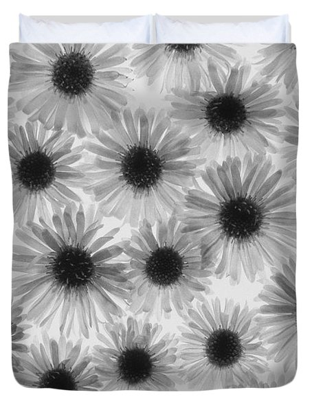 Chrysanthemum Flowers Duvet Cover by Graeme Harris