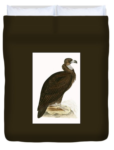Cinereous Vulture Duvet Cover by English School