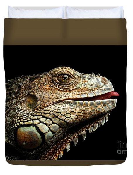 Close-upgreen Iguana Isolated On Black Background Duvet Cover by Sergey Taran