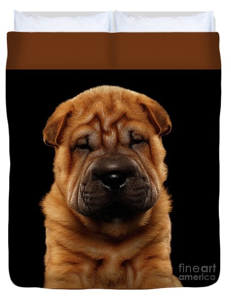 Closeup Funny Sharpei Puppy Isolated On Black Duvet Cover by Sergey Taran