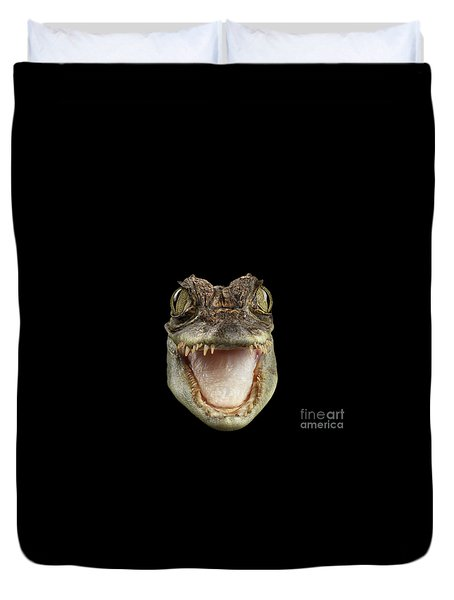 Closeup Head Of Young Cayman Crocodile , Reptile With Opened Mouth Isolated On Black Background, Fro Duvet Cover by Sergey Taran