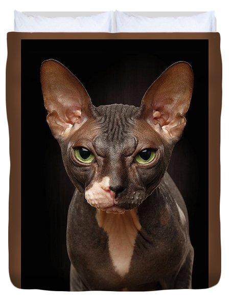 Closeup Portrait Of Grumpy Sphynx Cat Front View On Black  Duvet Cover by Sergey Taran