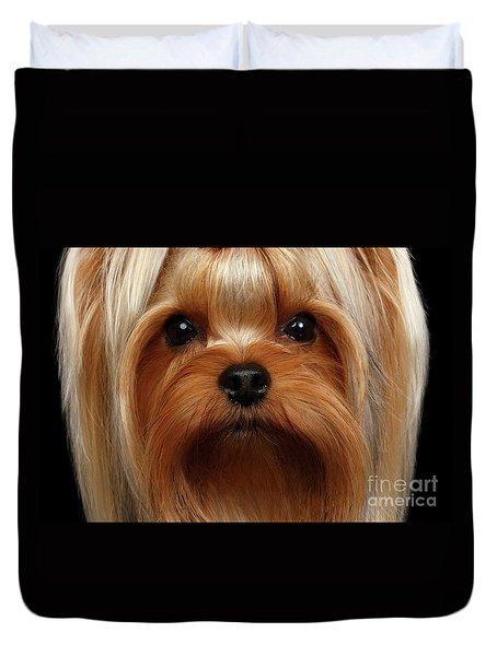 Closeup Portrait Yorkshire Terrier Dog On Black Duvet Cover by Sergey Taran