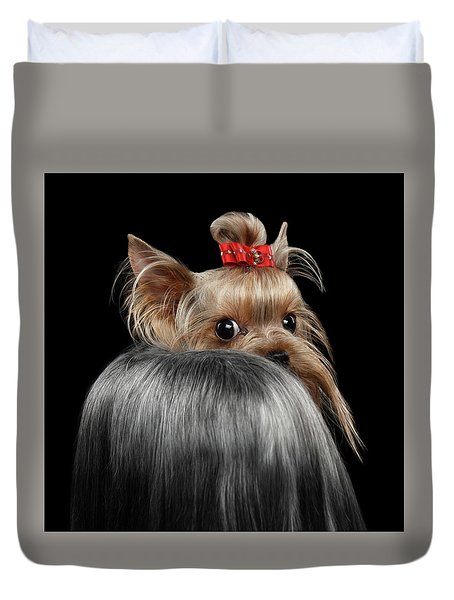 Closeup Yorkshire Terrier Dog, Long Groomed Hair Pity Looking Back Duvet Cover by Sergey Taran