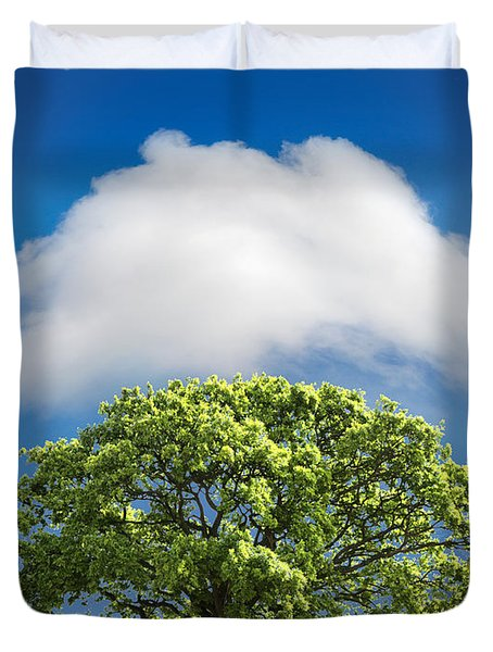 Cloud Cover Duvet Cover by Mal Bray