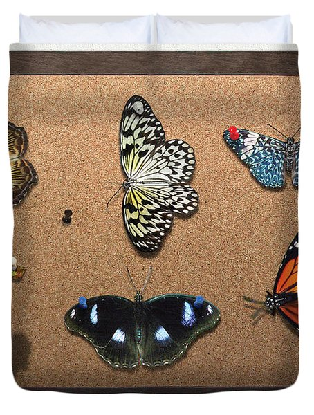 Collector - Lepidopterist - My Butterfly Collection Duvet Cover by Mike Savad