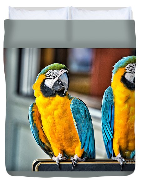 Colored Parakeet Duvet Cover by Peter Dang