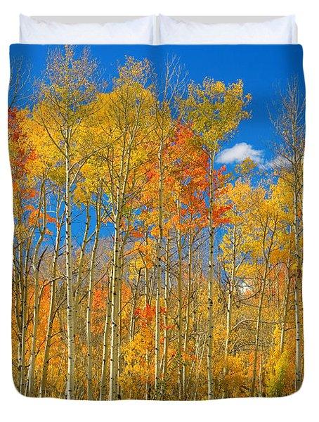 Colorful Colorado Autumn Landscape Duvet Cover by James BO  Insogna
