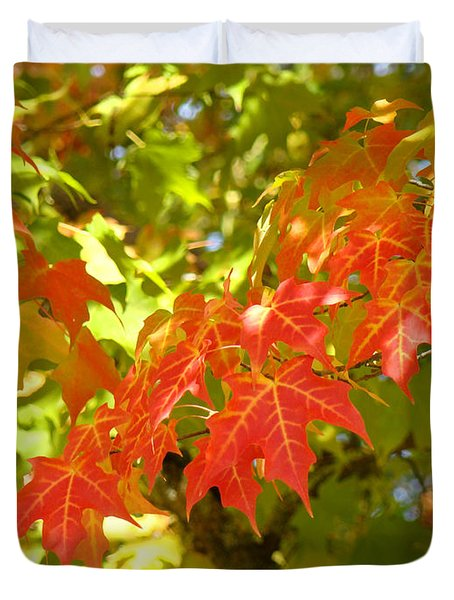 Colorful Fall Leaves Red Nature Landscape Baslee Troutman Duvet Cover by Baslee Troutman
