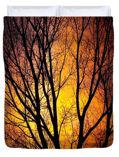 Colorful Tree Silhouettes Duvet Cover by James BO  Insogna
