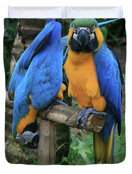 Colourful Macaw Pohakumoa Maui Hawaii Duvet Cover by Sharon Mau