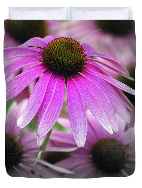 Coneflowers Duvet Cover by Marty Koch