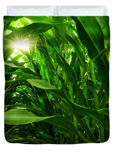 Corn Field Duvet Cover by Carlos Caetano