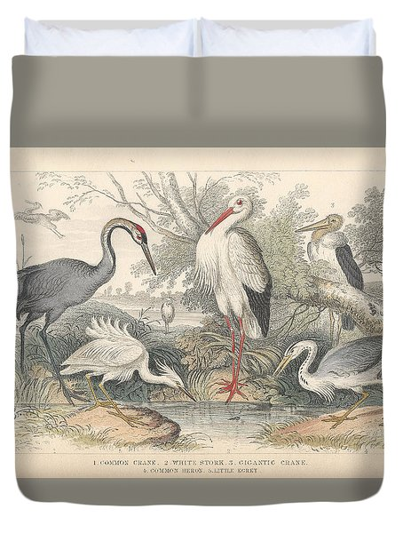Cranes Duvet Cover by Oliver Goldsmith
