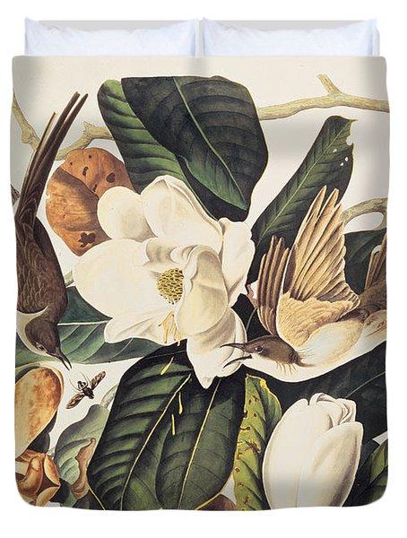Cuckoo On Magnolia Grandiflora Duvet Cover by John James Audubon