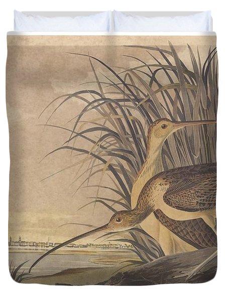 Curlew Duvet Cover by John James Audubon