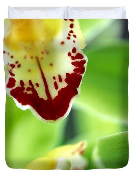 Cymbidium Seafoam Emerald Orchid Duvet Cover by Kathy Yates