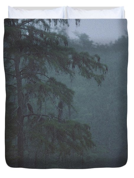 Cypress Swamp Duvet Cover by Kimberly Mohlenhoff