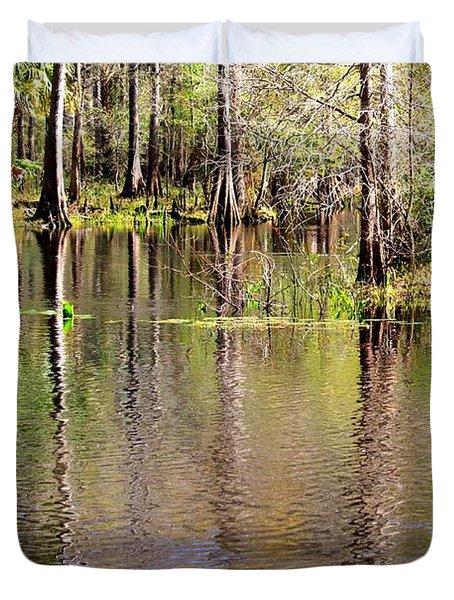 Cypress Trees along the Hillsborough River Duvet Cover by Carol Groenen