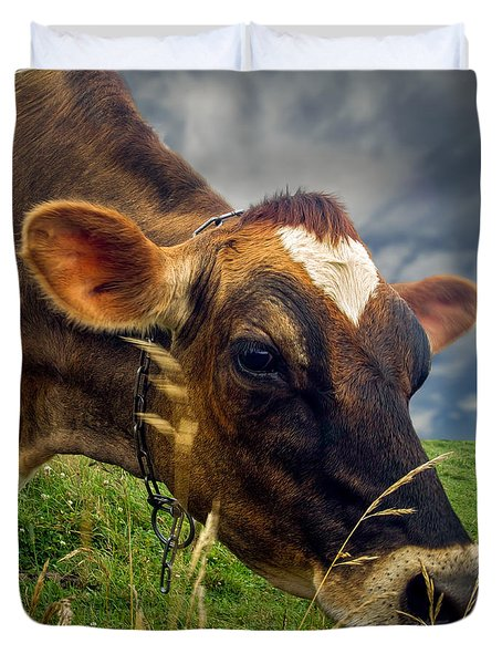 Dairy Cow Eating Grass Duvet Cover by Bob Orsillo