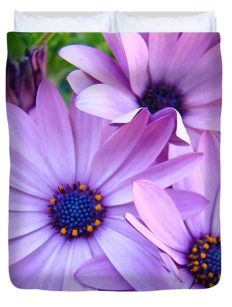 Daisies Lavender Purple Daisy Flowers Baslee Troutman Duvet Cover by Baslee Troutman