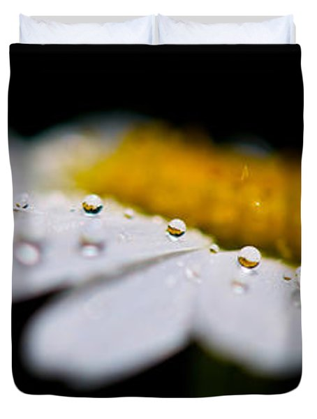 Daisy Water Drops Triptych Duvet Cover by Lisa Knechtel