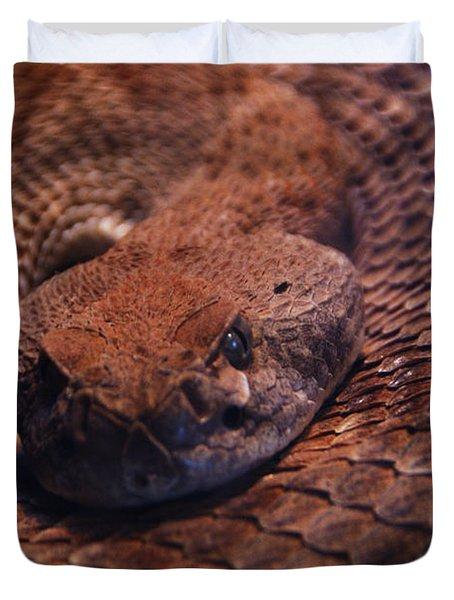 Dangerously Handsome Duvet Cover by Linda Shafer
