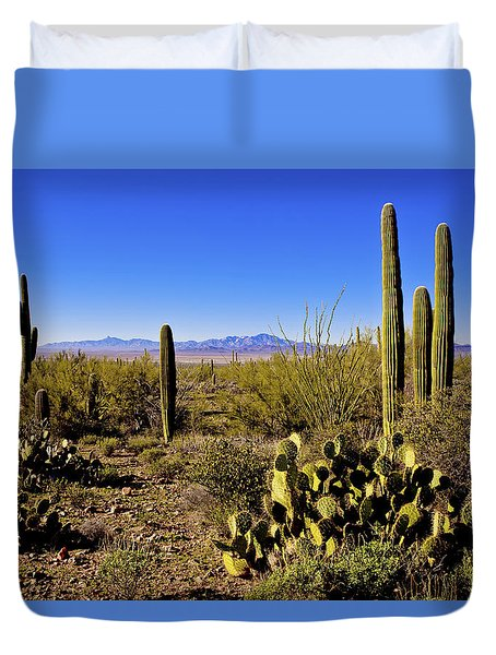 Desert Spring Duvet Cover by Chad Dutson