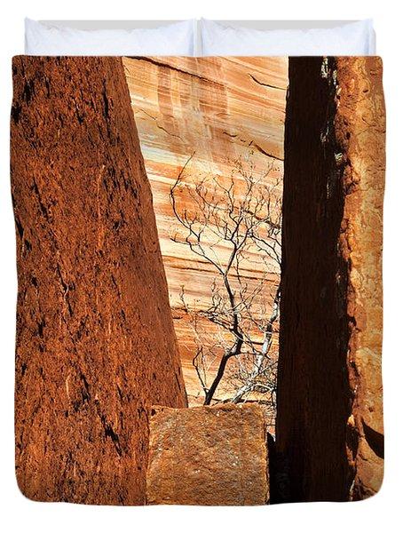 Desert Vise Duvet Cover by Mike  Dawson