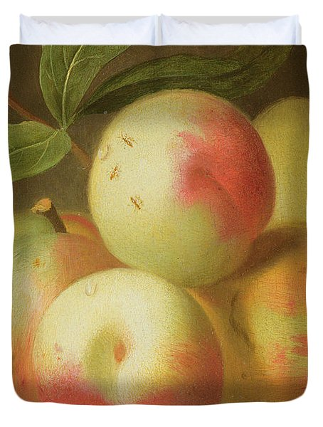 Detail Of Apples On A Shelf Duvet Cover by Jakob Bogdany