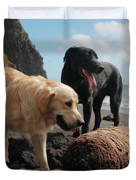 Dogs Playing At The Beach Duvet Cover by Gaspar Avila