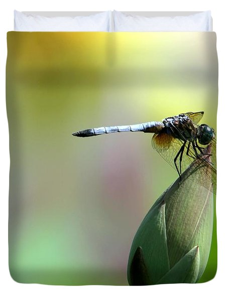 Dragonfly in Wonderland Duvet Cover by Sabrina L Ryan