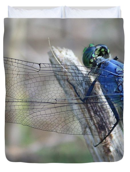 Dragonfly Wing Detail Duvet Cover by Carol Groenen