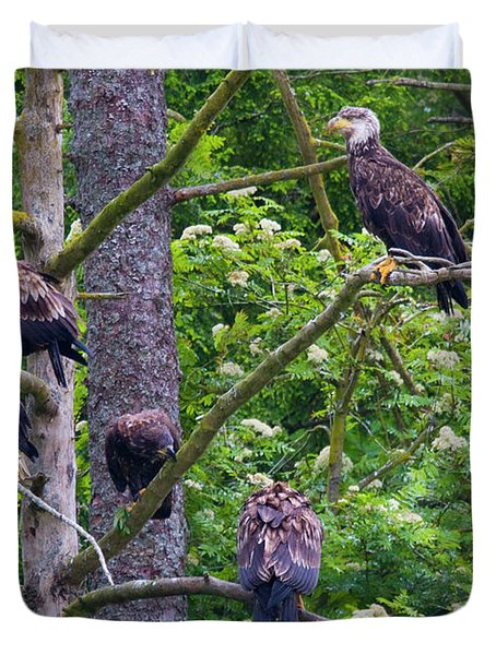 Eagle Tree Duvet Cover by Mike  Dawson