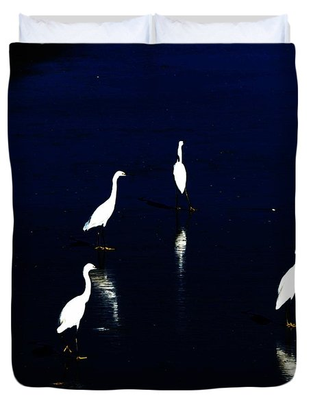 egret reflections Duvet Cover by David Lane