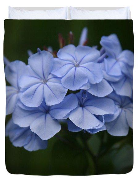 Eia Au La E Ke Aloha Blue Plumbago Duvet Cover by Sharon Mau