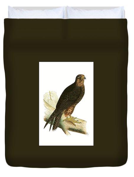 Eleonora Falcon Duvet Cover by English School