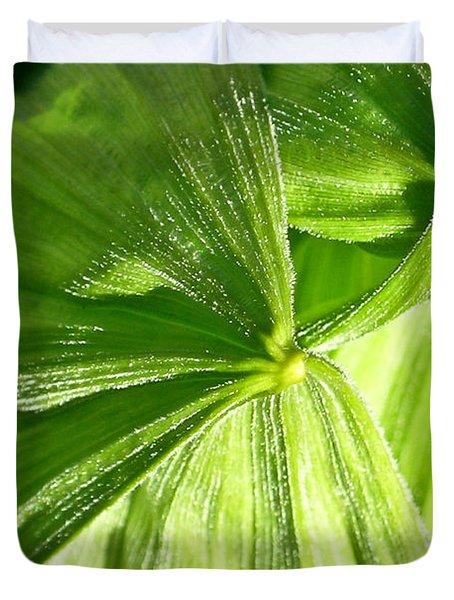 Emerging Plants Duvet Cover by Douglas Barnett