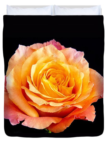 Enticing Beauty The Orange  Rose Duvet Cover by Daphne Sampson