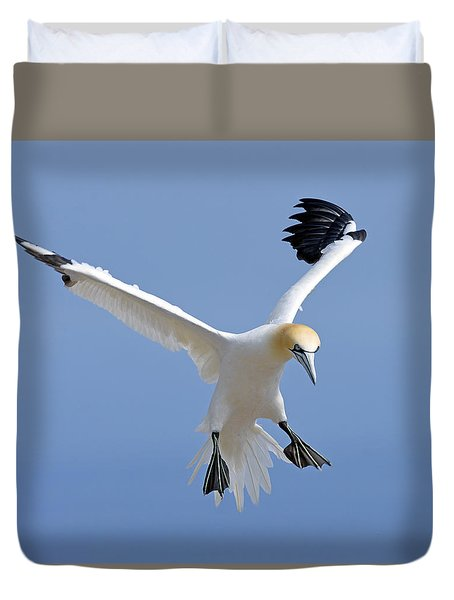 Expanding Surface Duvet Cover by Tony Beck