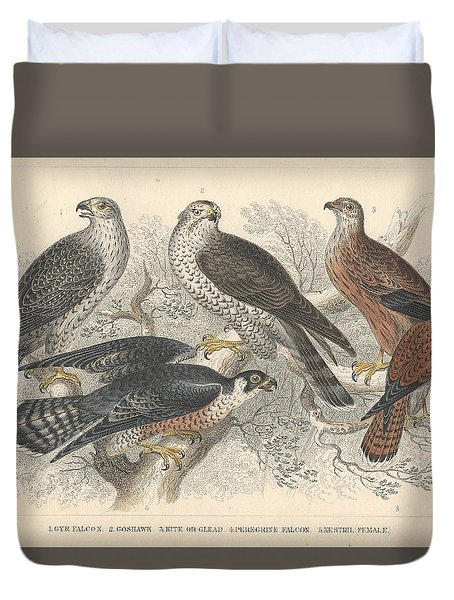 Falcons Duvet Cover by Oliver Goldsmith